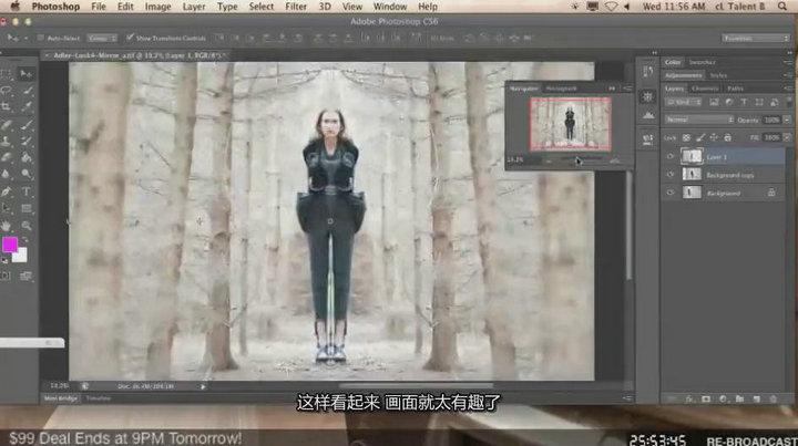 琳西 Photoshop商业人像后期修图调色教程【中文字幕】 收集整理 第2张