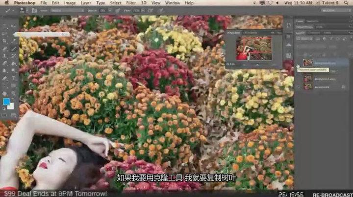 琳西 Photoshop商业人像后期修图调色教程【中文字幕】 收集整理 第11张