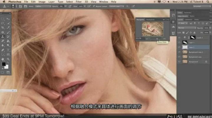 琳西 Photoshop商业人像后期修图调色教程【中文字幕】 收集整理 第9张