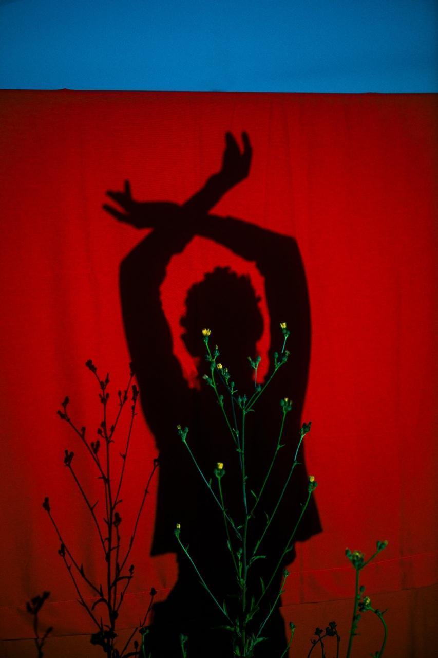 Elizaveta Porodina摄影作品 THE WINNER OF EVERYTHING 时尚图库 第11张